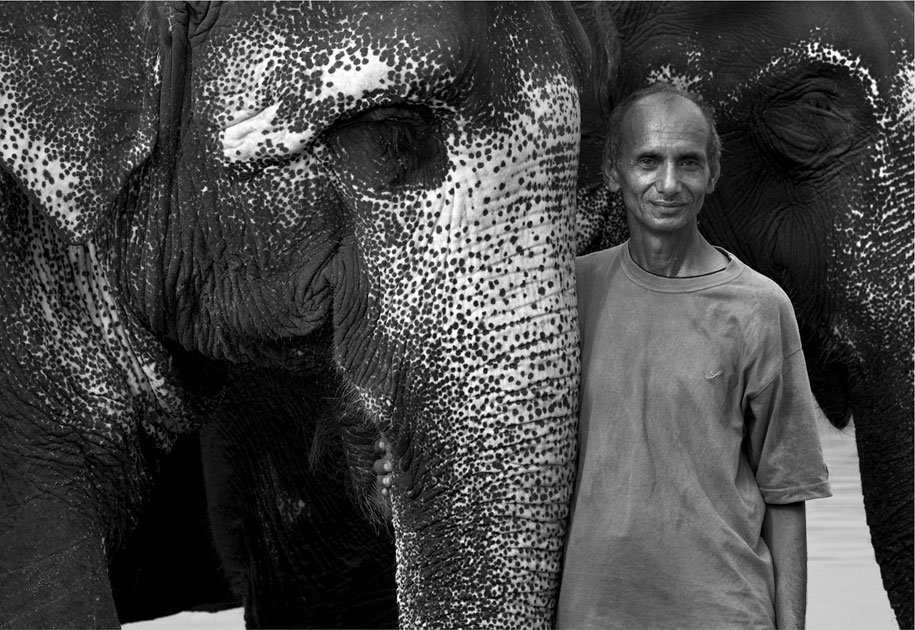 01_wwf.elephant.mahout.ogilvy&mather.blackandwhite.corbett.nationalpark.india.jpg
