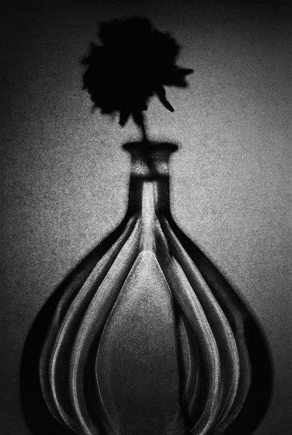 08_flower.bottle.blackandwhite.jpg